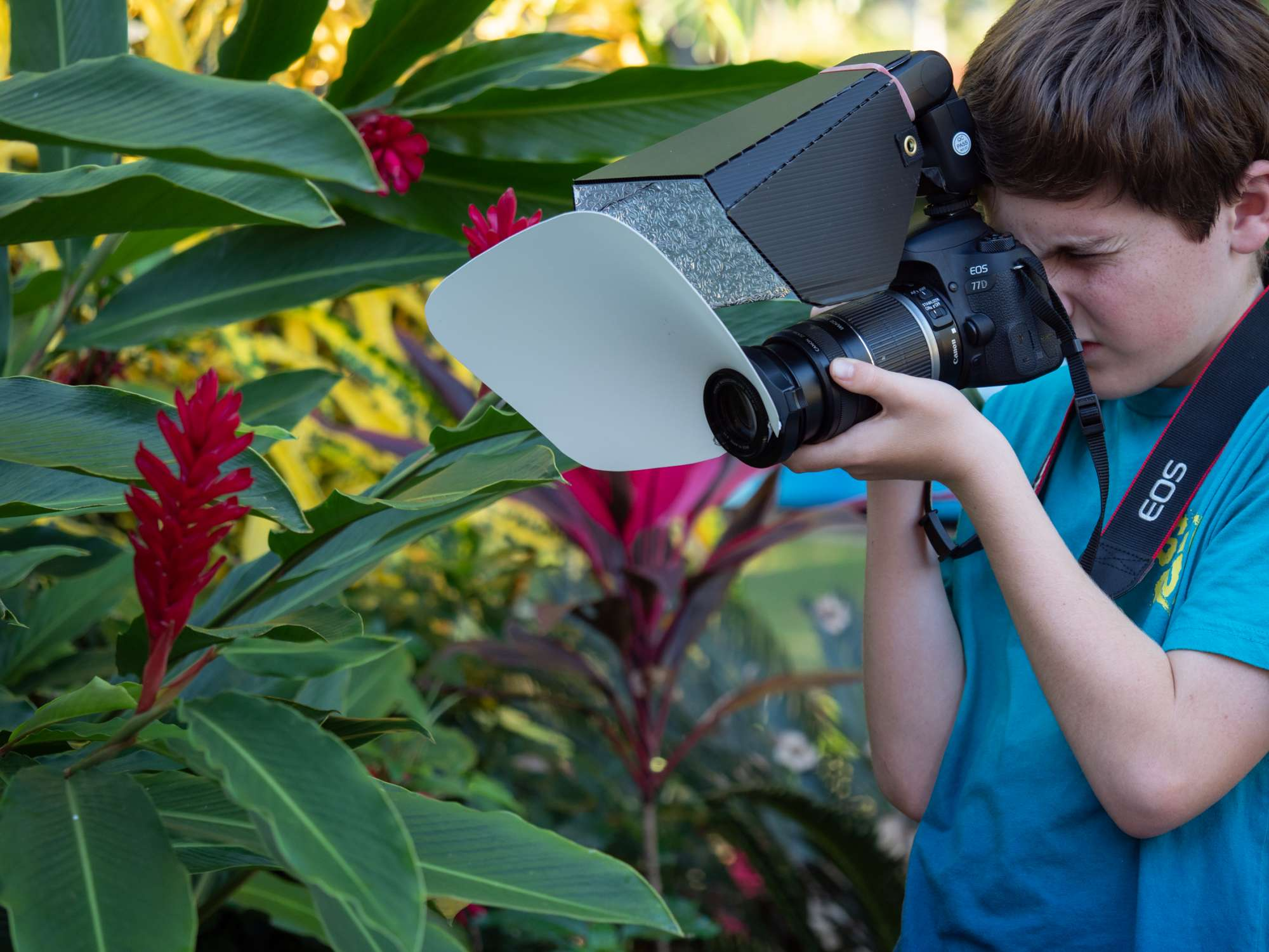 Little buggers Boy using Canon 77D DSLR with CygnusTech flash diffuser to take photographs of flower.