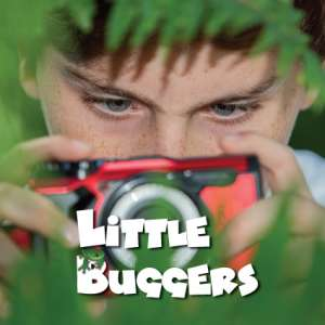 Little Buggers thumbnail logo