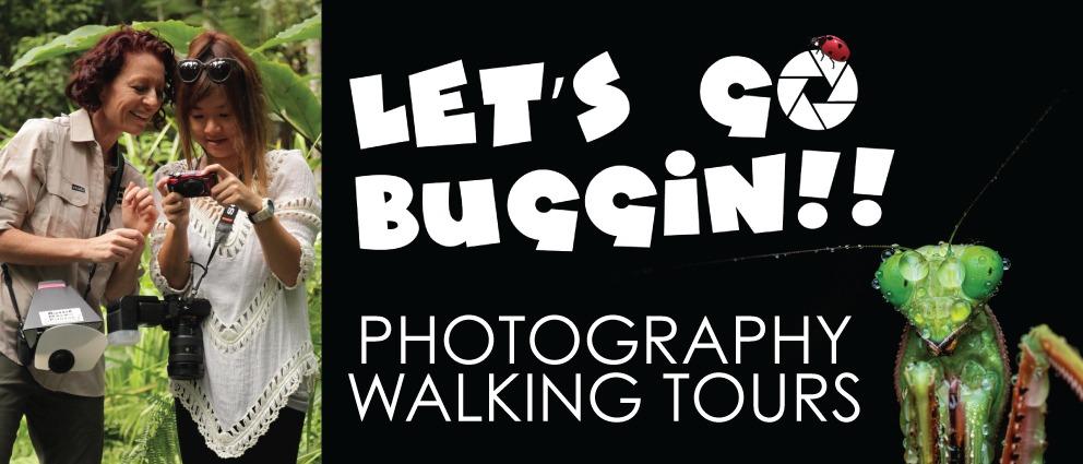 Let's Go Buggin Tour Aussie Macro Photos