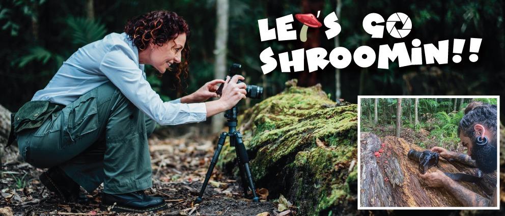 Let's Go Shroomin Tour Aussie Macro Photos
