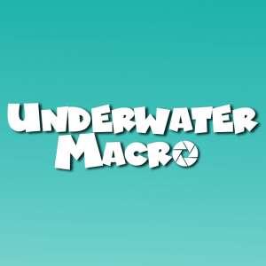Underwater Macro Thumbnail