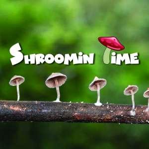 Mushroom Tour Blog Thumbnail