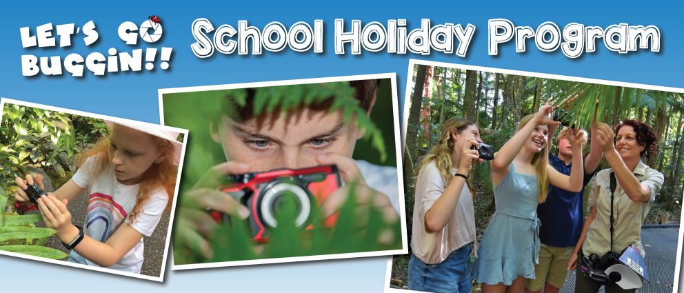 School Holiday Program Lets Go Buggin Nature Photography Tour