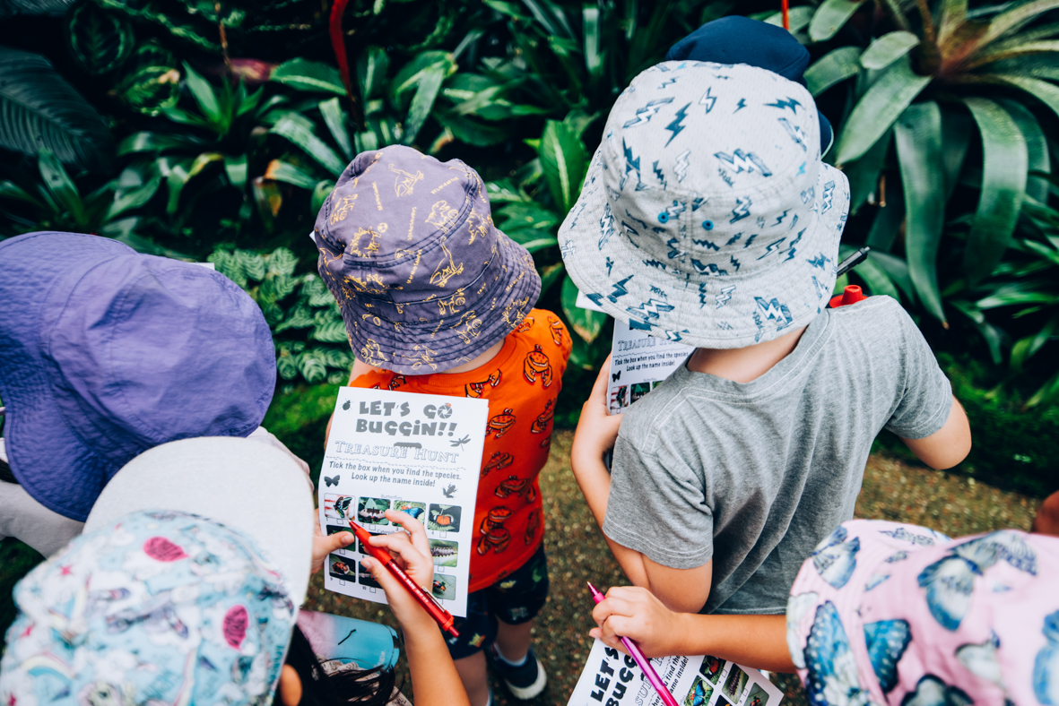 Children looking at plants and bugs at Cairns Botanic Gardens