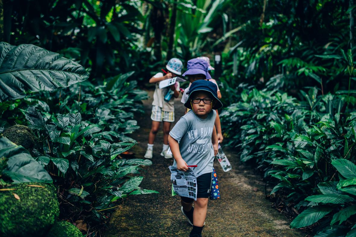 Children in Cairns Botanic Gardens